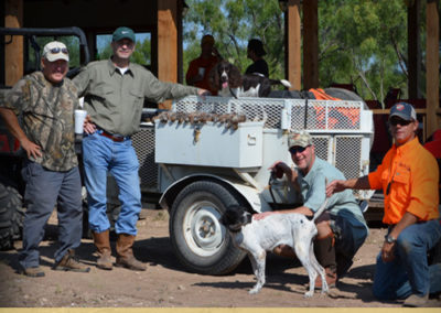 Texas Blue and Bob White Quail Hunt Services